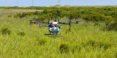 Unmanned Systems: Aerial spraying with drones gains traction, slowly