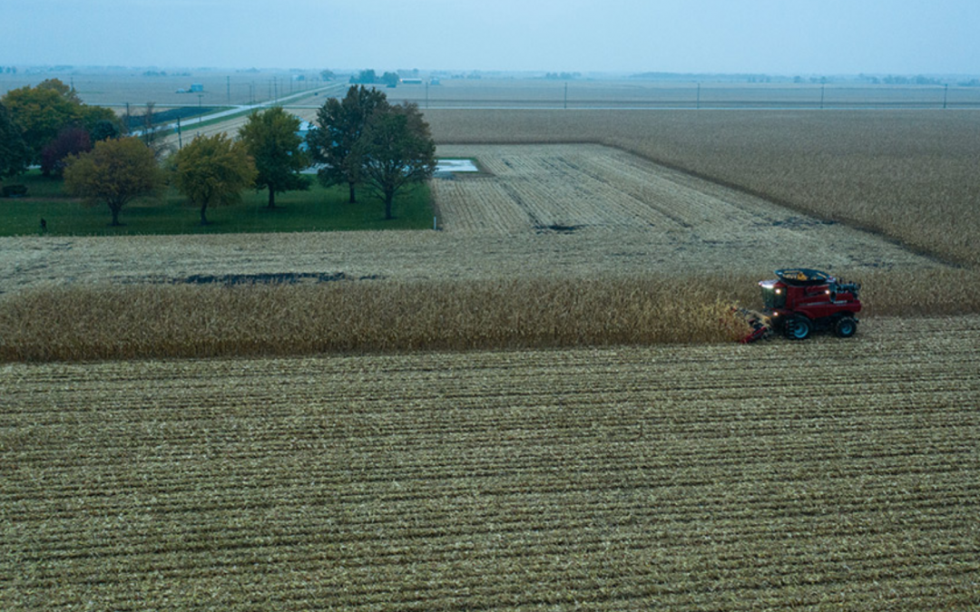Bill McDonnell of Syngenta harvests corn at a farm near Ottawa, Illinois
