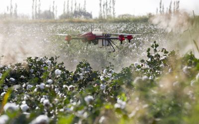 ScienceLine: A growing flock of farm drones could help with our pesticide problem