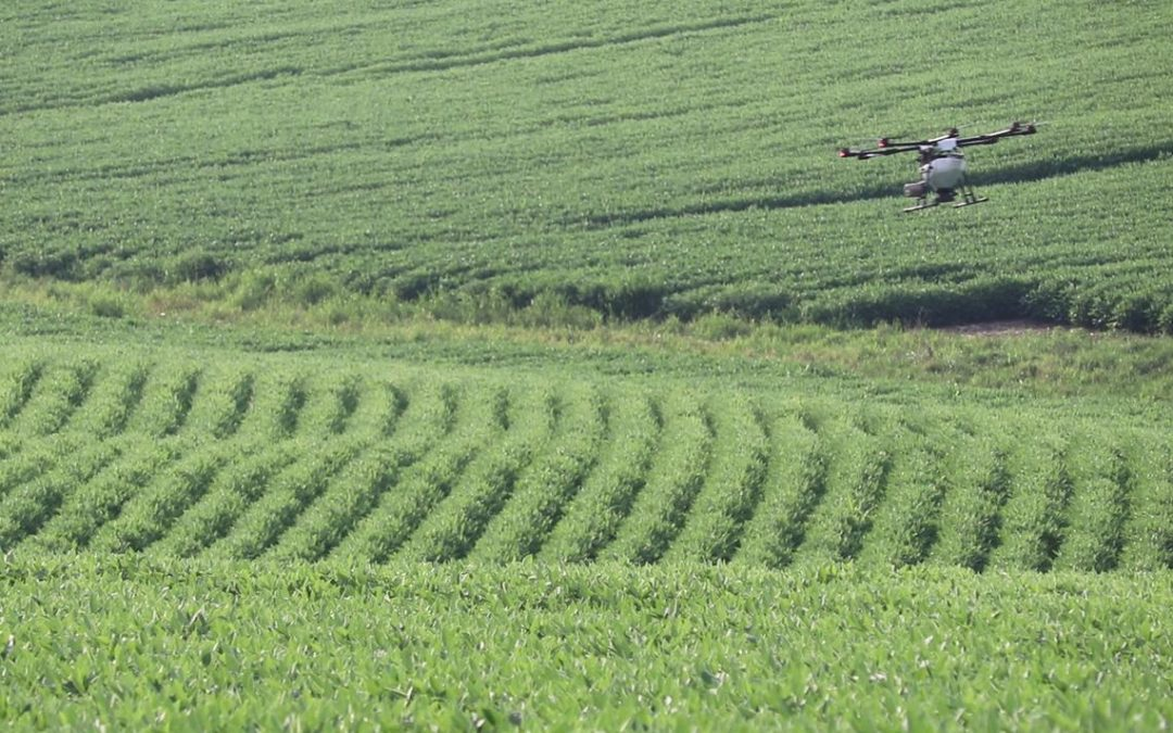Rantizo applies cover crops over soybeans with drones