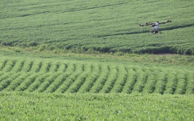 AgWeek Magazine: Winona County field day shows the hype is real for cover crops