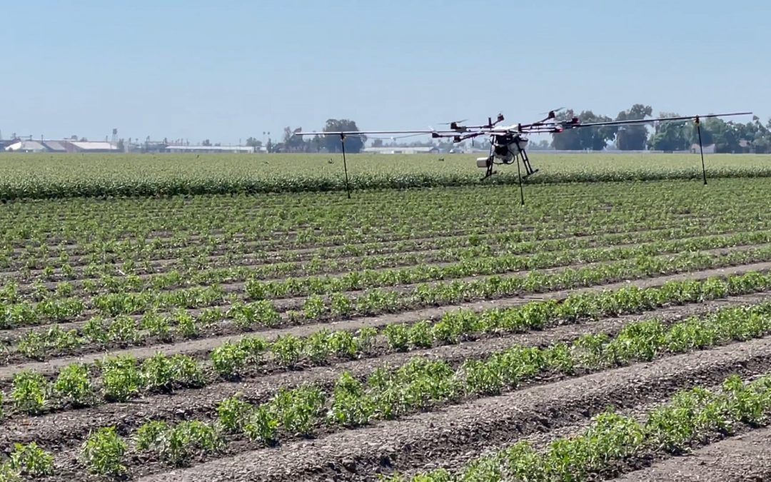 Rantizo is revolutionizing foliar application with drones